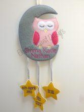 Owl Moon Design file